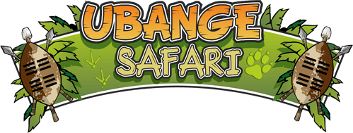 Ubange Safari